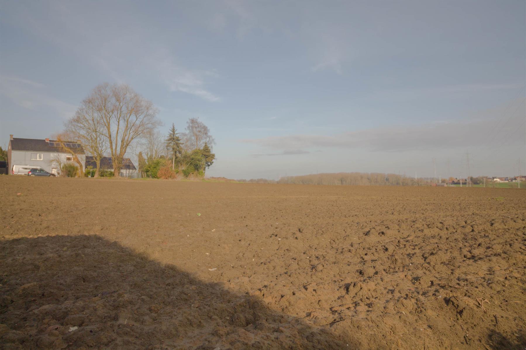 Terrain à bâtir - Trazegnies - #3967988-5