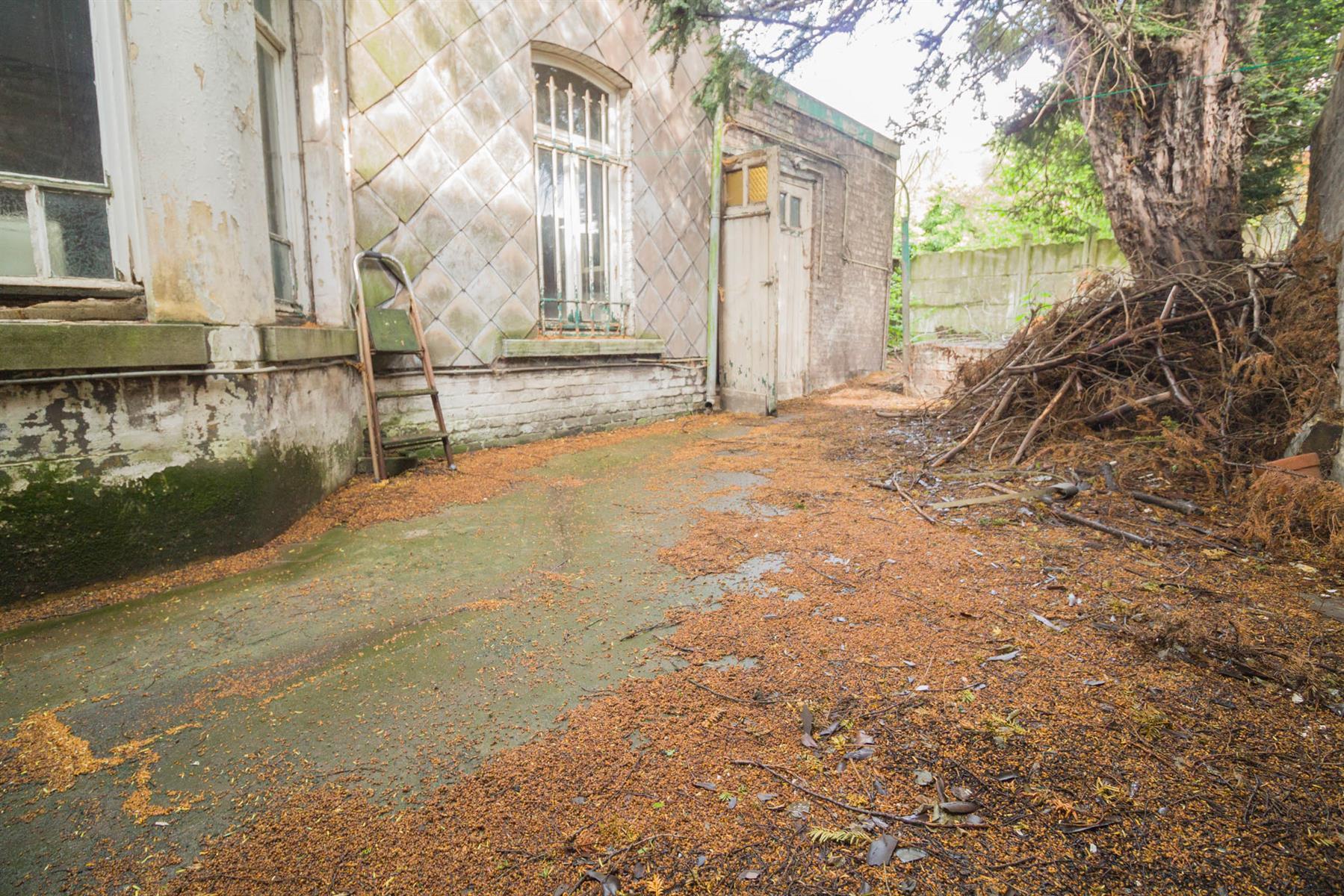 Maison de maître - Dampremy - #4373994-28