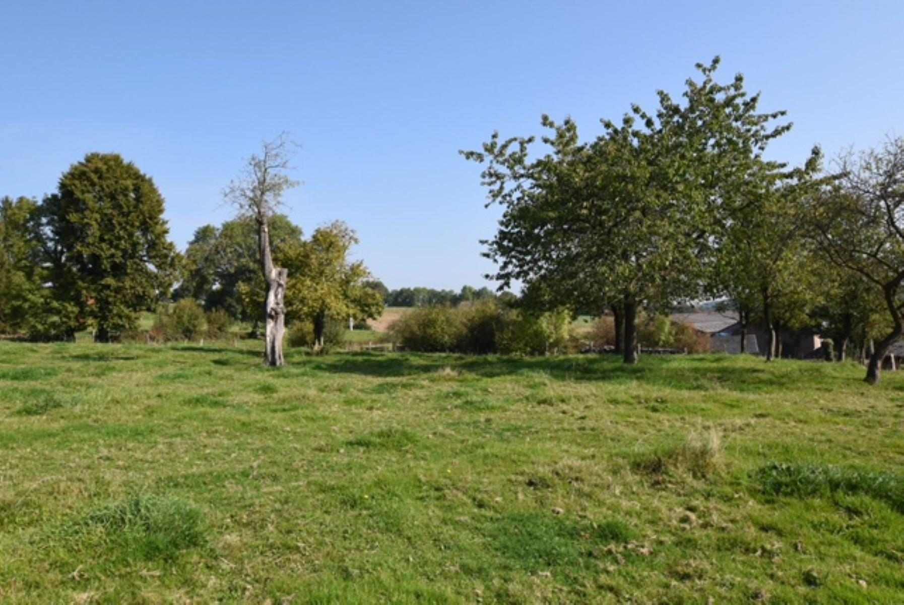 Building ground - Houyet Mesnil-Saint-Blaise - #3404123-5