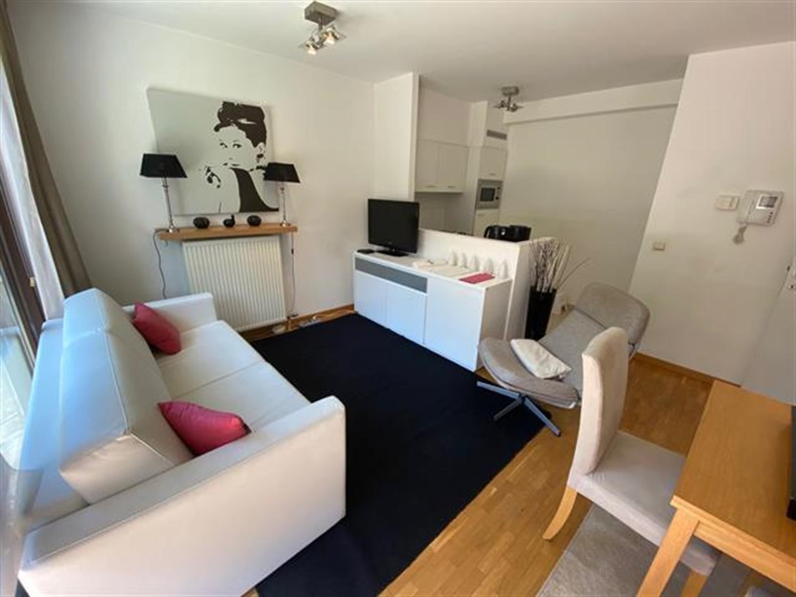 Appartement - Etterbeek - #4086182-1