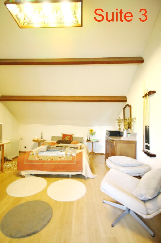 Villa - Lessines Boisde-Lessines - #2103910-31