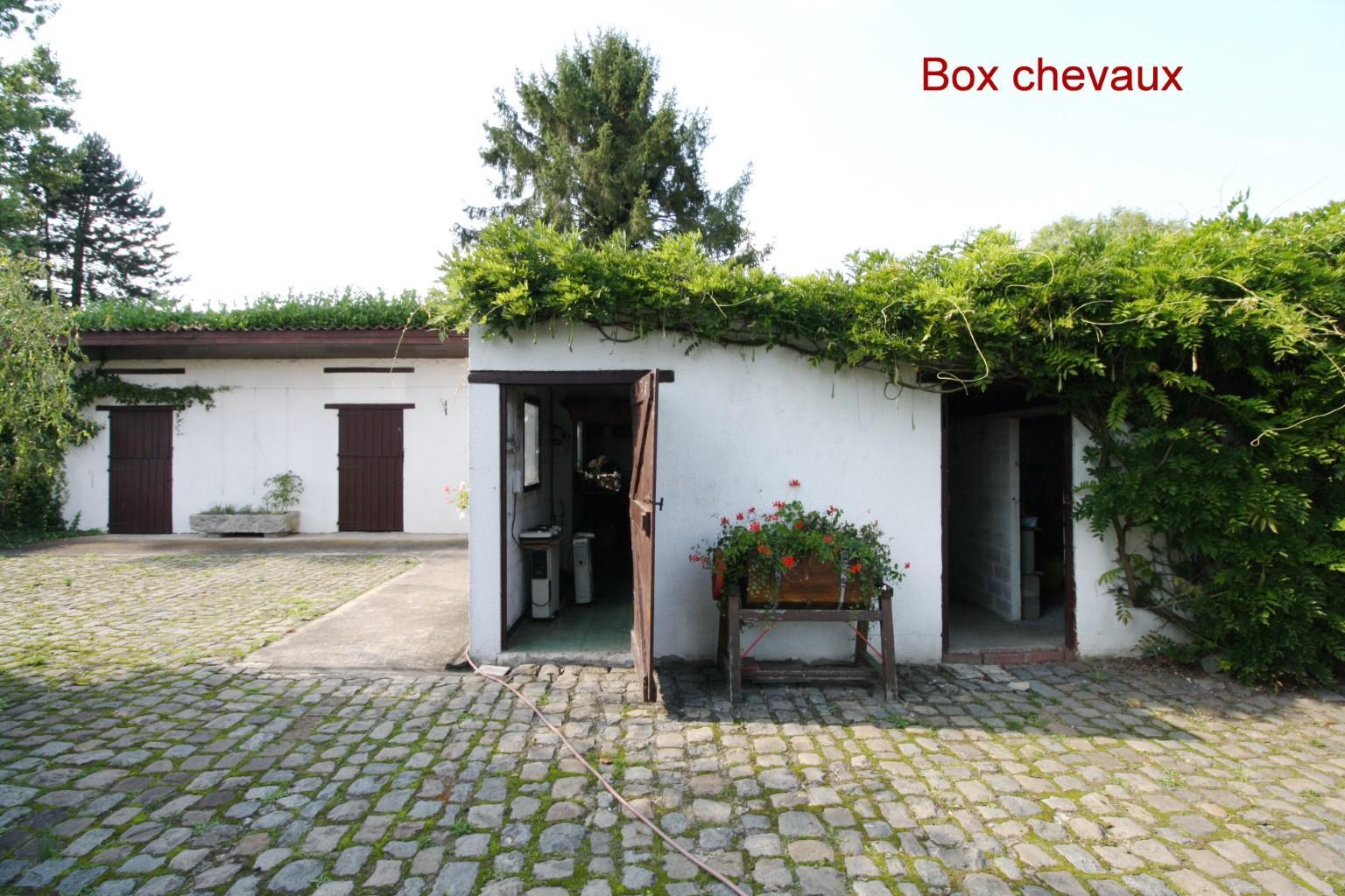 Villa - Lessines Boisde-Lessines - #2103910-12