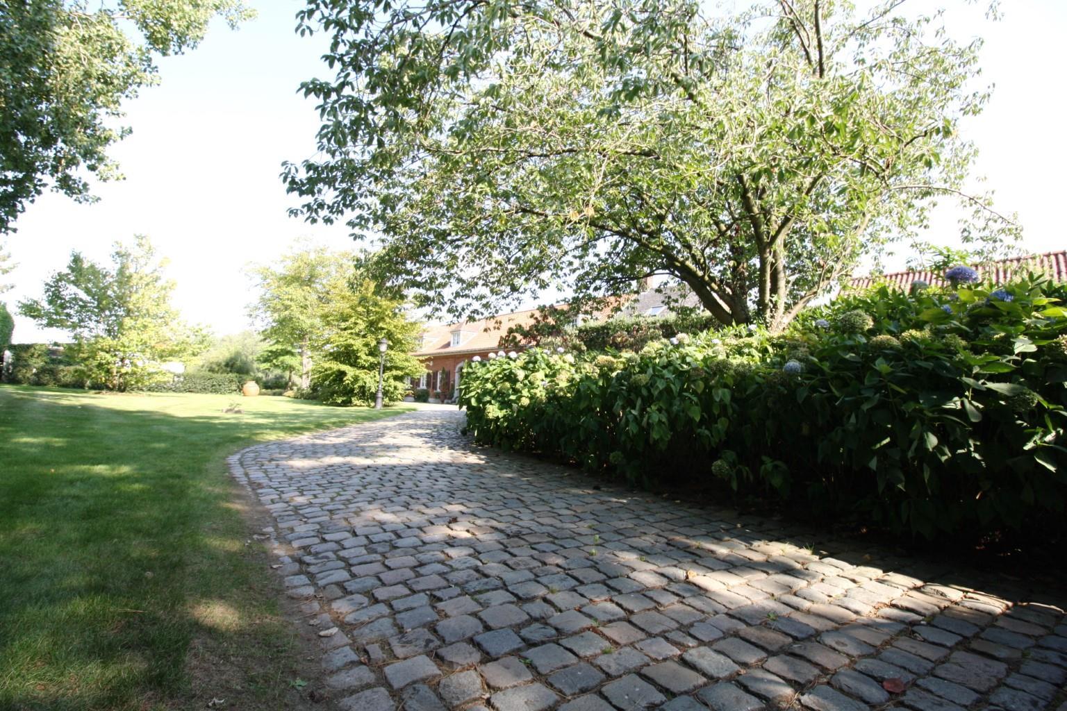 Villa - Lessines Boisde-Lessines - #2103910-2